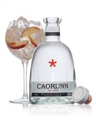 Caorunn Gin  (1 Liter)