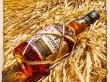 Rum Plantation - Black Cask - Barbados & Peru 2020